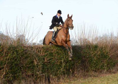 Phillip Hall – Winner of Multiple South East Area Point to Point Championships